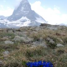 Gstaad-Zermatt-Leukerbad-Gemmi